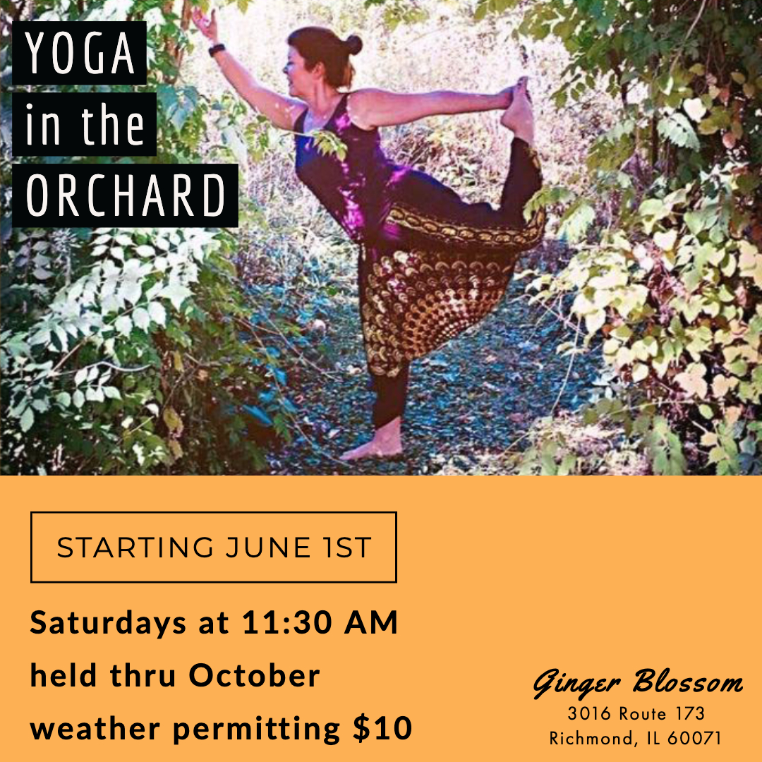 Yoga in the Orchard on Sundays