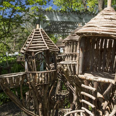 Basket Houses from sustainable tree roots