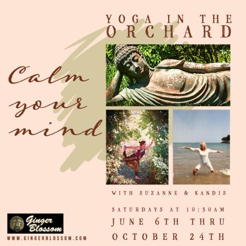 Yoga in the Orchard at Ginger Blossom